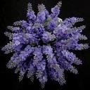 Pretty/Lavender Free-Form Satin Bridesmaid Bouquets (123031369)