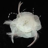 Glamourös Perle/Federn/Chiffon Blumen und Federn
