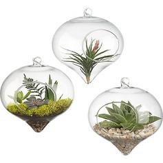 Элегантный повешение стекло ваза