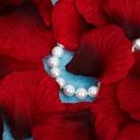 Classic Rose Fabric Petals (Set of 5 packs)