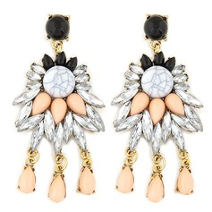 Legering Resin Dames Fashion Oorbellen