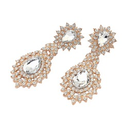 Attractive Alloy/Rhinestones Ladies' Earrings
