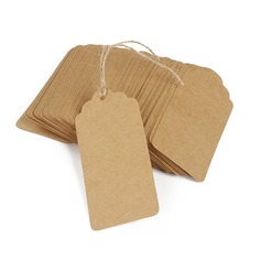 Classic Rectangular Kraft Paper Tags (Set of 100)