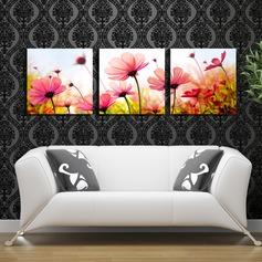 Vackra Och Blommönster Duk Oljemålning