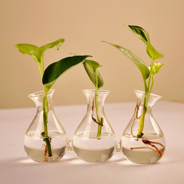 Kreativ Runde Koblet Glass Vase