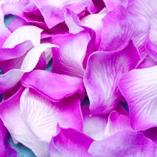 Nice Lilac Rose Petals (Set of 5 packs)