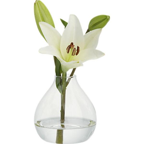 Hübsche Glas Vase