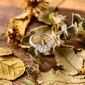 Sterling Silver Cyrkonia Three Stone Princess Cut Pierścionek zaręczynowy Krążki Obietnica -